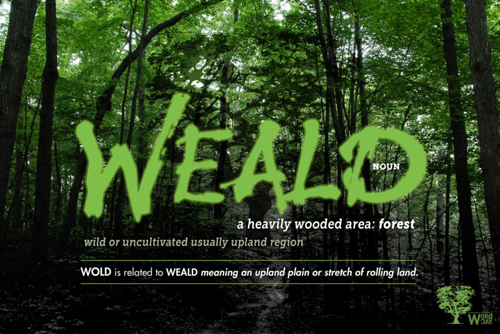 WEALD: heavily wooded area - forest